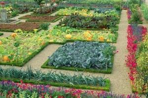 flower-garden-design-app